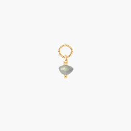 Labradoriet Disc Ketting Bedel | 14K Gold Filled