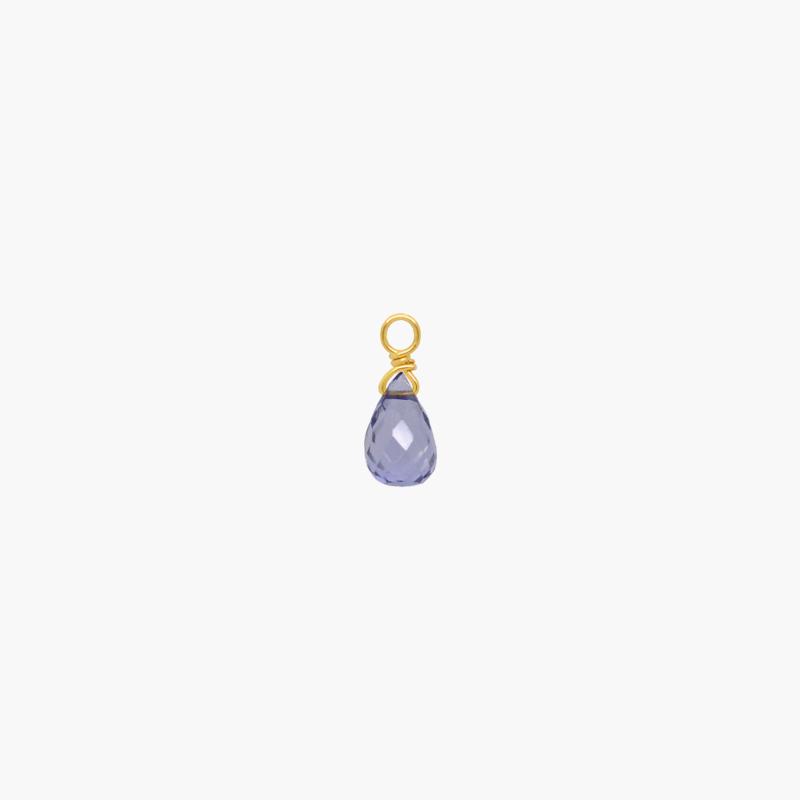 Ioliet Oorbel Hanger | 14K Gold Filled