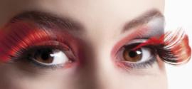 Wimpers flamboyante zwart rood