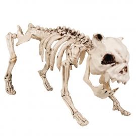 Scary dog skeleton