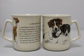 Mok Jack Russell-Terrier