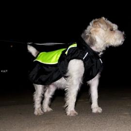 Hondenjas Illume Nite Neon ca. 35 cm ruglengte