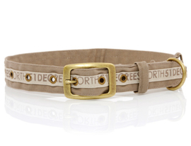 51 Degrees North Dog Collar   White Sand
