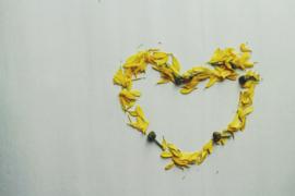 Taal van het hart