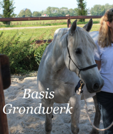 Online Cursus Basis Grondwerk. Freestyle.