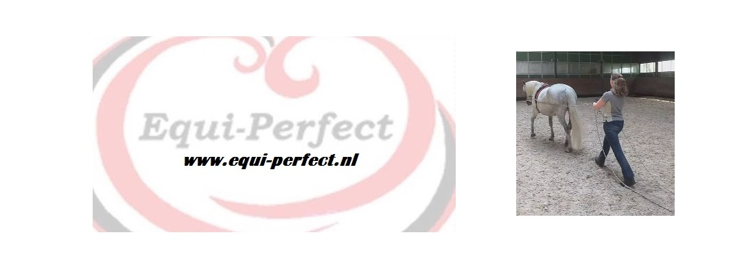 www.equi-perfect.nl