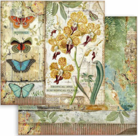 Stamperia - Amazonia - Orchid and Butterfly  - Paper -  30.5 x 30.5  cm