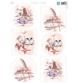 MB0181  Mattie  - Mattie's mooiste: Wintervogels