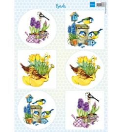 VK9553  - Algemeen - Birds