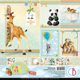 Ciao Bella - My First Year - Dubbelzijdig Paper pad 30,5 cm x 30,5 cm. - CBPM042B