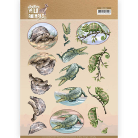 3D Cutting sheet - Amy Design - Wild Animals Outback - Reptiles