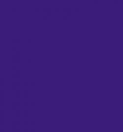 VersaCraft Small Inkpad  116 Peony Purple
