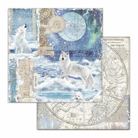 Stamperia - Arctic Antarctic - Paper - 30,5 x 30,5 cm. - Wolf