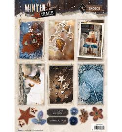 Studio Light -  Winter Trails