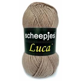 Scheepjeswol Luca - colour 5