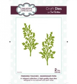Creative Expressions Craft Dies CED1433 Maidenhair Fern