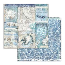 Stamperia - Arctic Antarctic - Paper - 30,5 x 30,5 cm. - Shells