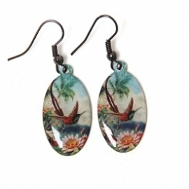 Tropical bird oorhangers
