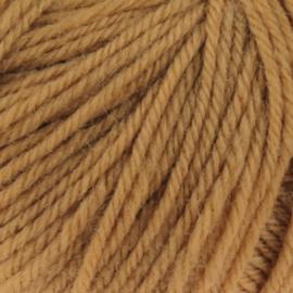 Malmedy 2508 camel bruin