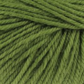 Malmedy 2520 groen