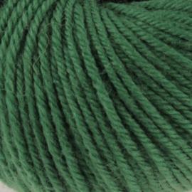 Malmedy 2546 kerst groen