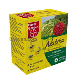 Bayer Natria Pyrethrum