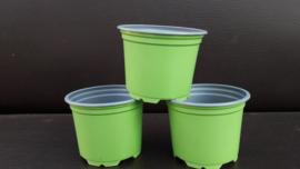 9 cm kweekpotjes groen