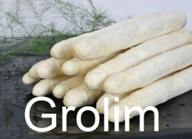 Grolim aspergeplanten voor witte asperge F1 Hybride