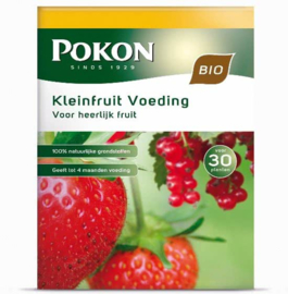 Pokon Bio aardbeien-, bessen- en druivenmest 1 kg voor 10 m2