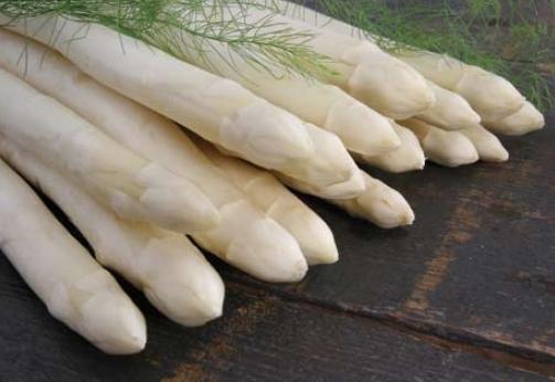 Aspergeplanten voor witte asperge F1 Hybride onze keuze voor op uw grond