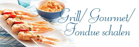 grill fondue banner goede.jpg