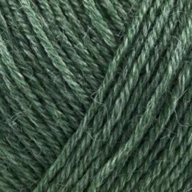 Onion Nettle sock 1006 Groen