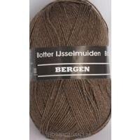 Bergen bruin 03