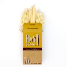 Biologisch afbreekbare cocktail rietjes - 100 pack