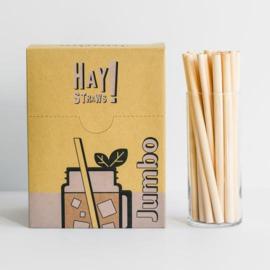 Biologisch afbreekbare smoothie rietjes - 250 pack