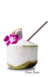 Jonge kokosnoot, 9 stuks (Geen verzendkosten regio Amsterdam**)