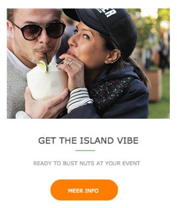 The Island Vibe