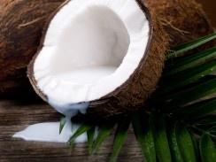 Bruine Kokosnoot