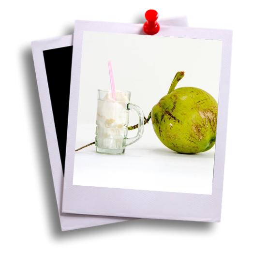 kokosnoot jong