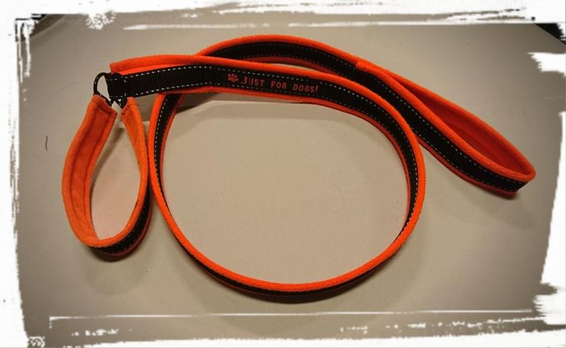 Agilitylijn neon oranje