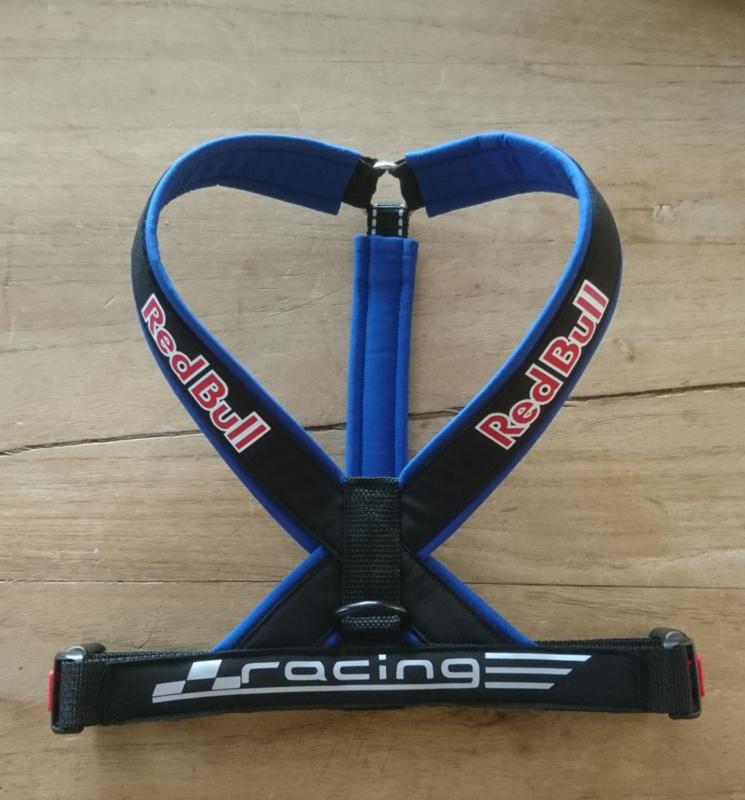 Red Bull Racing Y Tuig