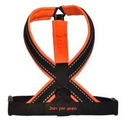 Y Tuig Neon Oranje softshell