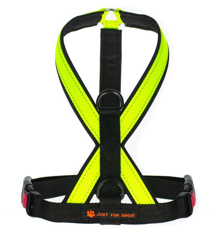 Basic Y  Sporttuig Neon Geel