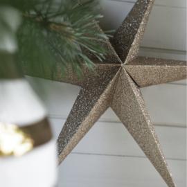 Delight Department - Kerstster set van 2 - goud glitter