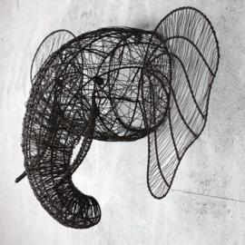 Nkuku - olifantenkop - groot