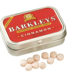 Barkleys Mints Cinnamon smaak SUGAR-FREE