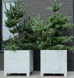 Verzinkt stalen plantenbak  800x800x800