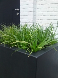 Polyester plantenbak 1370 x 500 x 500 mm