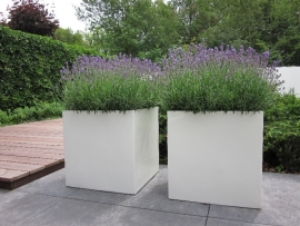 Polyester plantenbak 1000x1000x1000