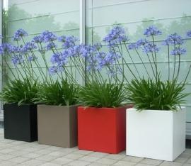 Polyester plantenbak 600x600x600